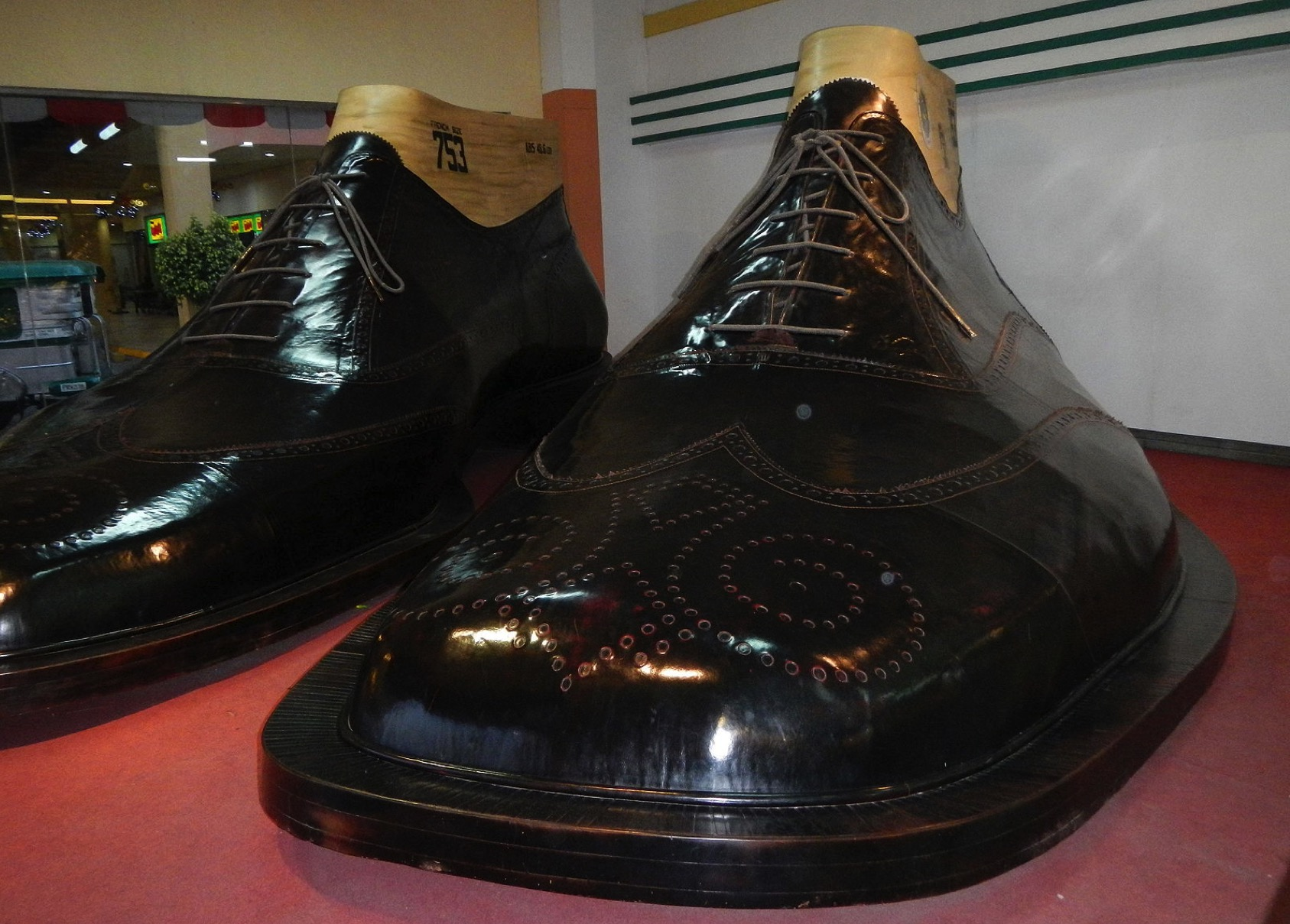 Largest Men S Shoe Size