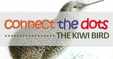 ACTIVITY SHEET: Connect The Dots – The Kiwi Bird